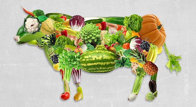 Risultati immagini per vegetarianesimo
